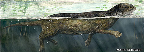 Artist's impression of Puijila