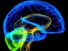 Искусственный мозг уже через 10лет!