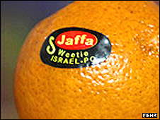 One of the oranges allegedly found in Iran (photo from the Iranian news agency Mehr)