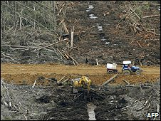 Deforestation (Image: AFP)