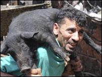 رجل يحمل خنزيرا
