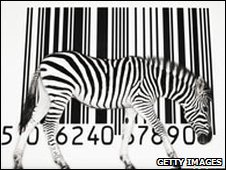 Zebra against a barcode (Tim Flach/Getty)