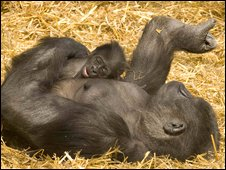 Nkoumou and mum Boma (photo by Dave Rolfe)