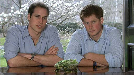 Prince William, Prince Harry and the frog