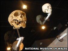 Wall of Skulls