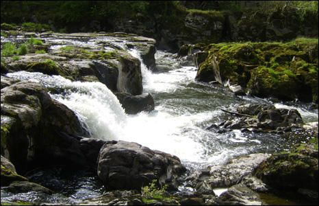 Fourteen-year-old John Allen took this picture in Cenarth while on a Duke of Edinburgh expedition in Ceredigion.