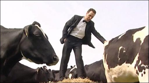 Marcello Bedoni and the cows