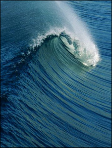 A wave (Image: EyeWire)