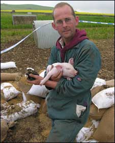 Farmer Cameron Naughton with a piglet and the remains of the bomb