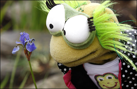 Jelly from CBeebies sniffing a flower (photo: Claire Borley)