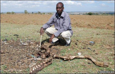 Peter Ole Nkolia, farmer, Narok, Kenya