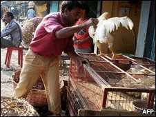 An Indian chicken seller at a local market in Siliguri