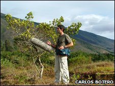 Researcher, Carlos Botero