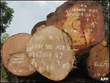 Logs, Cameroon