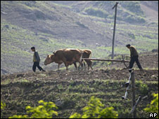 Farmers till the land in North Korea, seen from China, on 26 May 2009