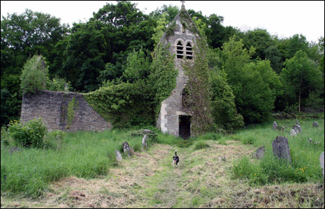 Max the dog finishes his inspection of the ruins of St Mary the Virgin, Tintern (Glen Perry).