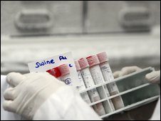 Swine flu test