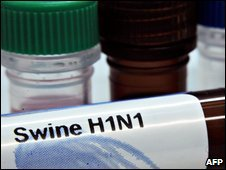Swine flu samples