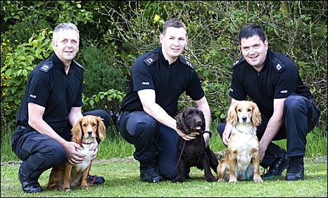 PC Stuart O�Malley with Gem, PC Paul McIlroy and Rocco and PC Steven Randall and Isla (L-R)