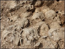The skulls found in the pit