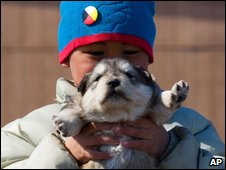 A young Inuit boy plays with a husky pup in Nunavut, Canada