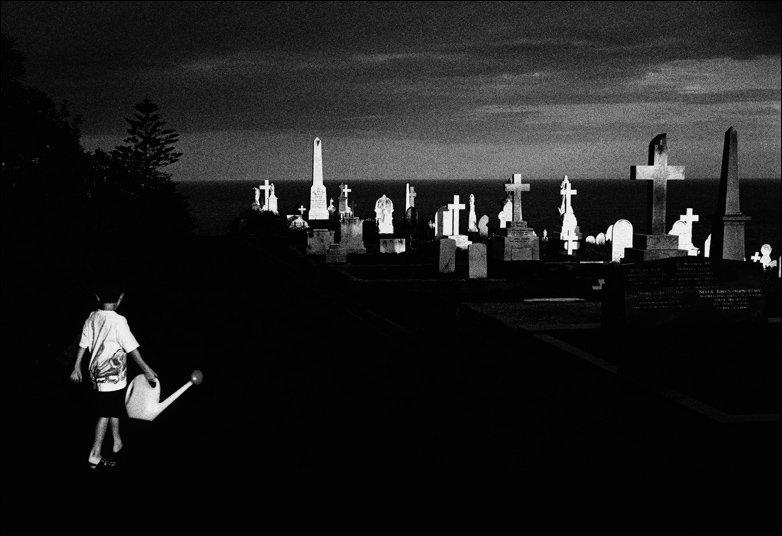 Boying walking into Sydney cemetery