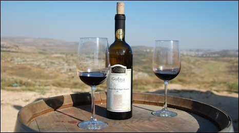 A bottle of wine with a view of Israeli vinyards
