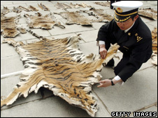 Seized tiger skins (Getty Images)