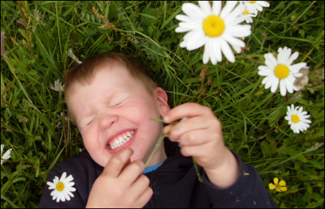Marc Lamerton sent us this shot of his son Tom playing in the daisies at Pembrey Park, Llanelli.