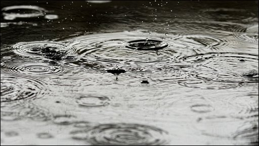 Rain drops fall in puddle