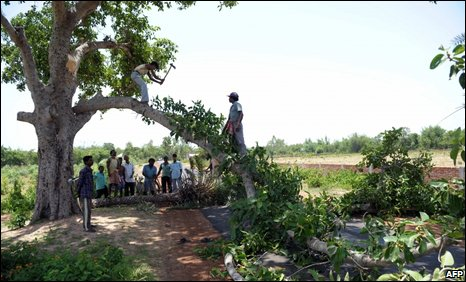 Protesters fell trees to construct roadblocks to prevent the paramilitary forces from entering the villages of Lalgarh in the Midnapore district, some 200km west of Kolkata on June 18, 2009