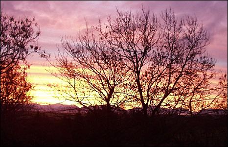 The sunrise in Llanerchymedd, Anglesey (Alan Challoner)