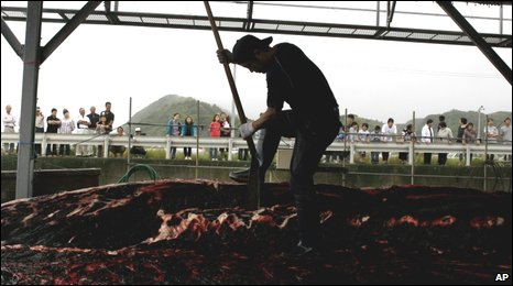 Baird's whale slaughter (AP)
