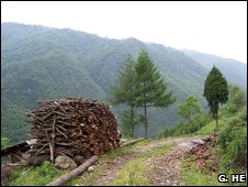 Fuelwood pile in the Wolong Nature Reserve, China