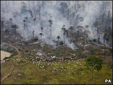 File photo of fires being used to clear the land in Sao Felix Do Xingu Municipality, Para, Brazil, August 2008