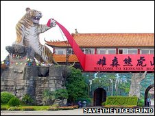 Tiger and bear theme park, China (Save the Tiger Fund)