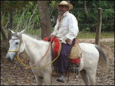 Cowboy in the Pantanal