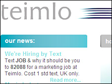 Teimlo's advert on it website