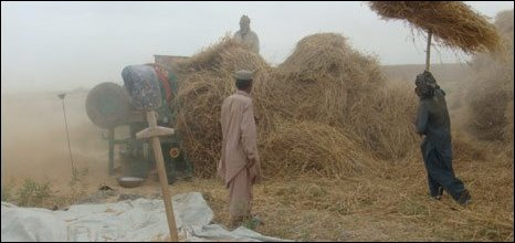farming in kunduz