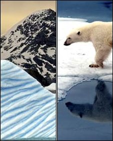 Antarctica (Photo: BBC) and polar bear in Arctic (Photo: Science Photo Library)