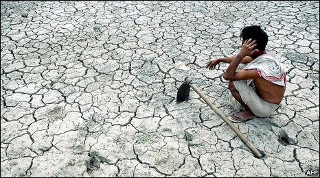 An Indian farmer in a field dried by drought (file pic)