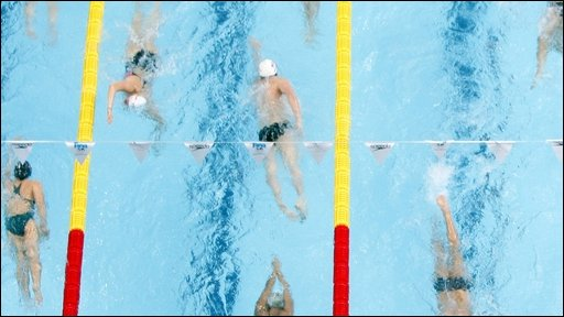 Swimmers in pool lanes