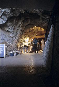 Gough's Cave (NHM)