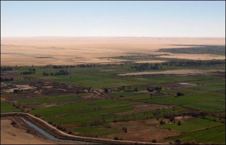 Abu Minqar oasis, Sahara desert