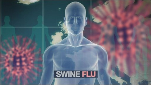 Swine flu graphic