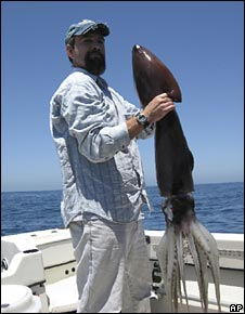 Biologist John Hyde holds a squid caught off the California coast in March 2005
