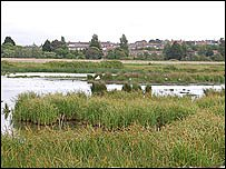 Radipole Lake Nature Reserve