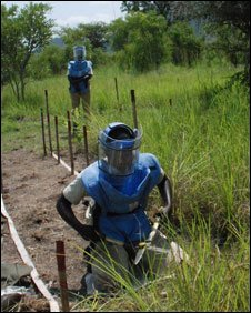 Mine-clearing workers in the field