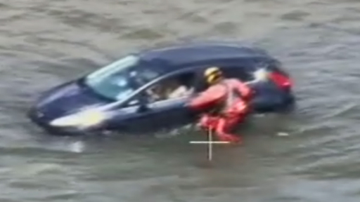 Footage of rescue