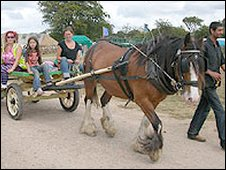 Horsedrawn cart at a previous Big Green Gathering